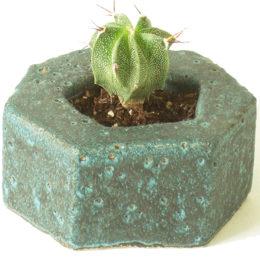 Tine Secher Keramik